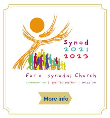 Synod info